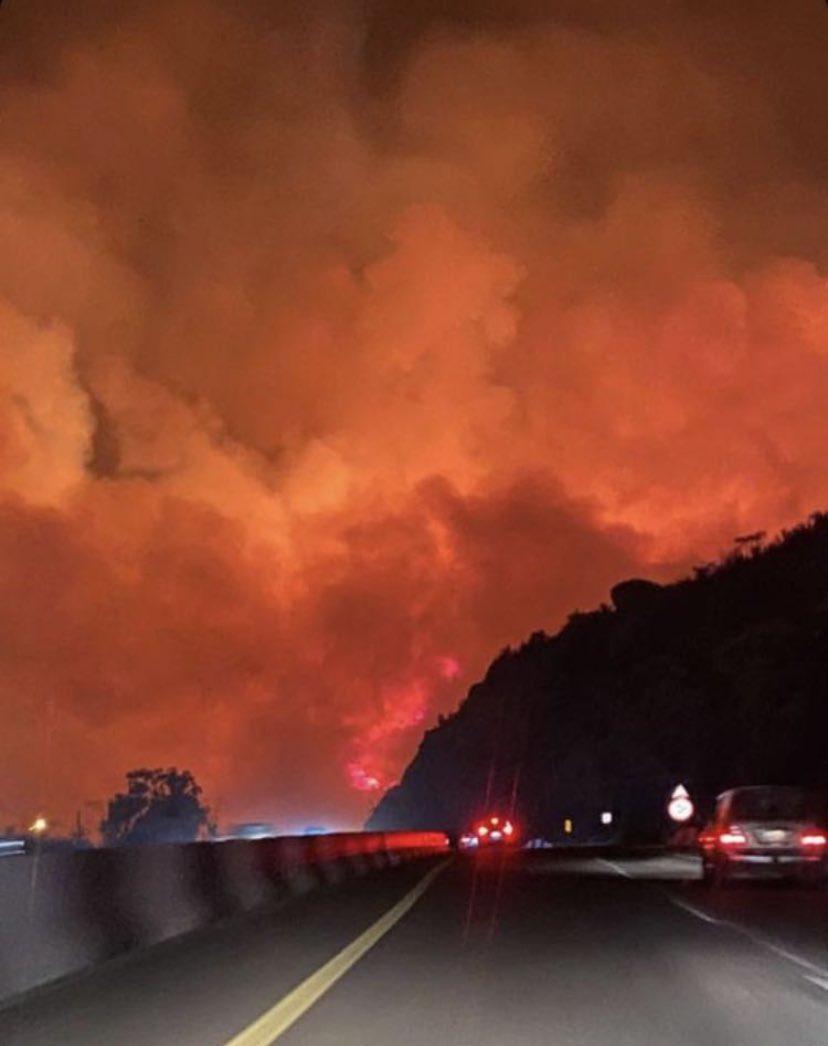 حريق ضخم في غابات جبل غلامة (1)