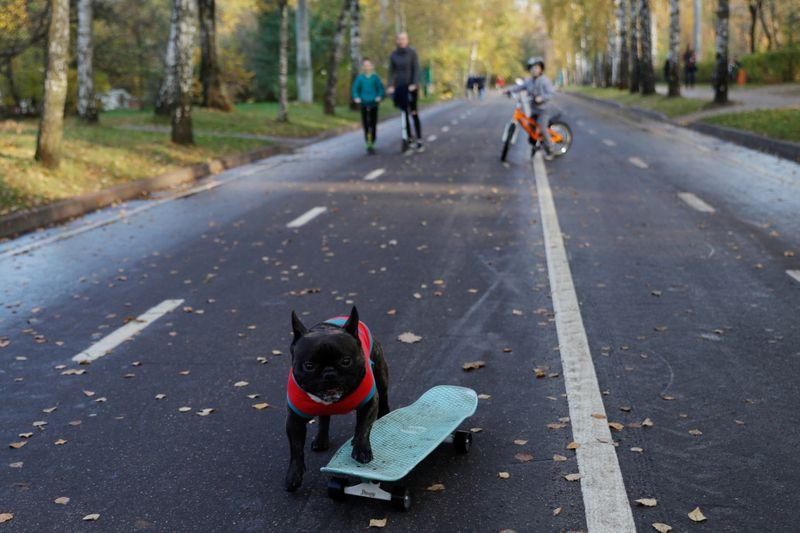 نورد بوس يتزلج في شوارع روسيا