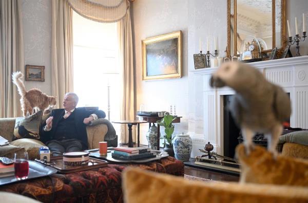 رئيس مجلس العموم لديه حيوانات أخرى مثل الكلب والسلحفاة