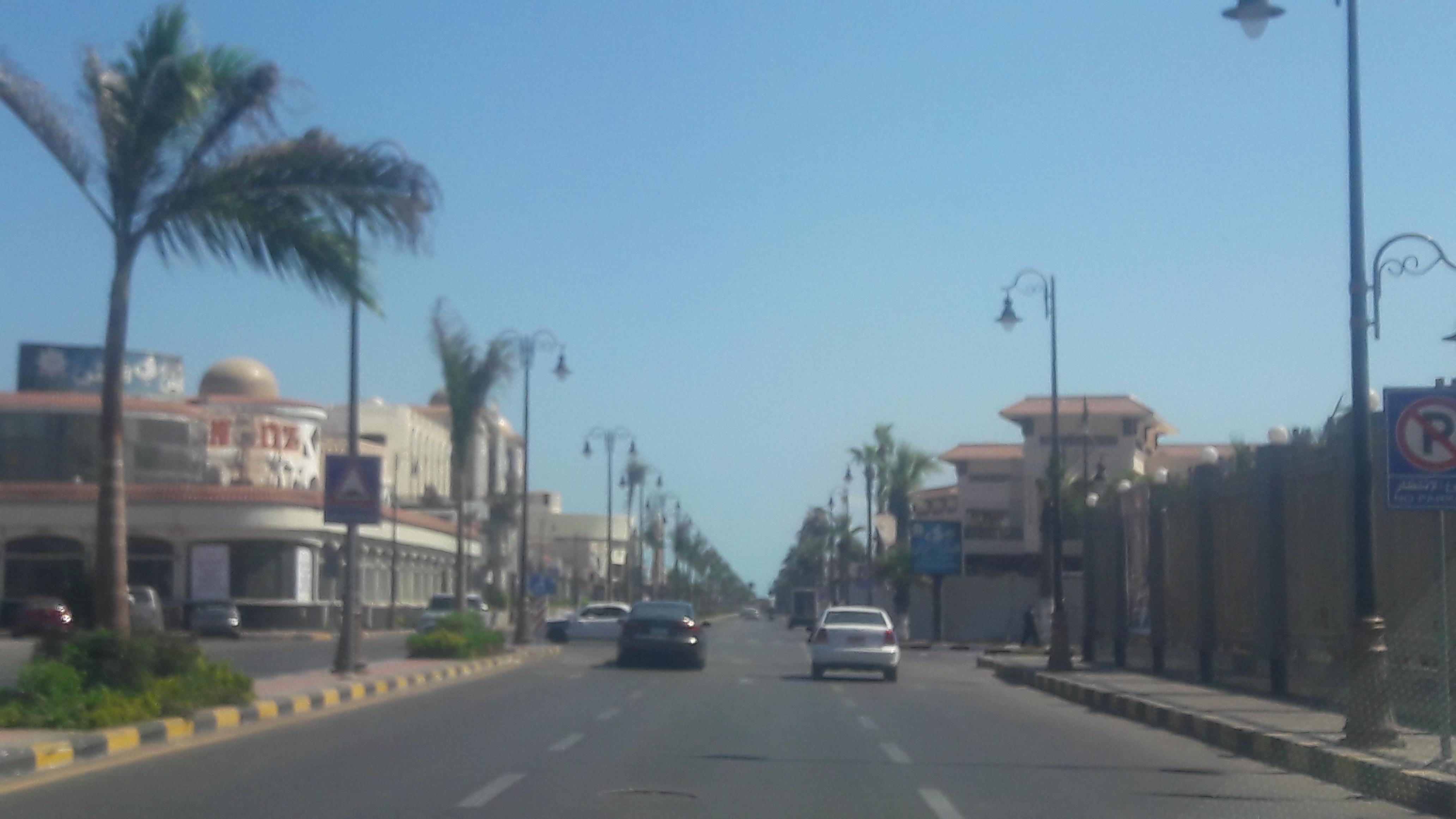 طقس معتدل دافئ على مدينتى بورسعيد وبورفؤاد  (6)