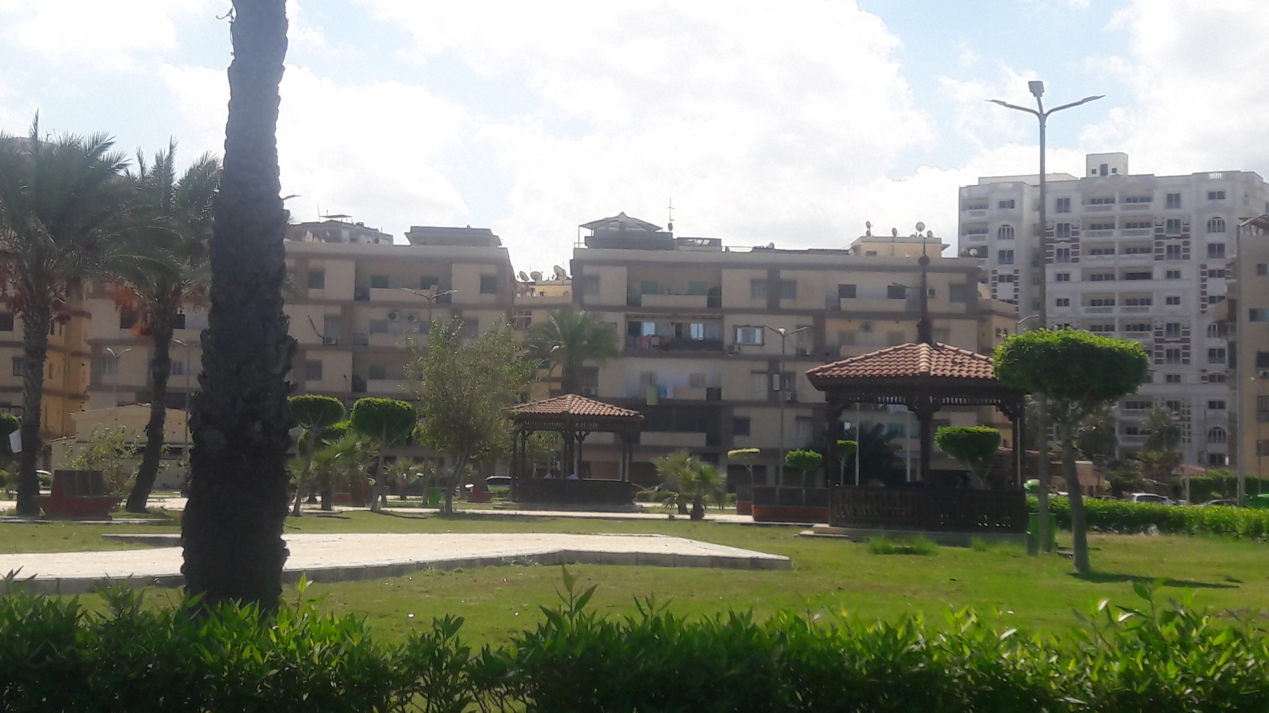 طقس معتدل دافئ على مدينتى بورسعيد وبورفؤاد  (2)