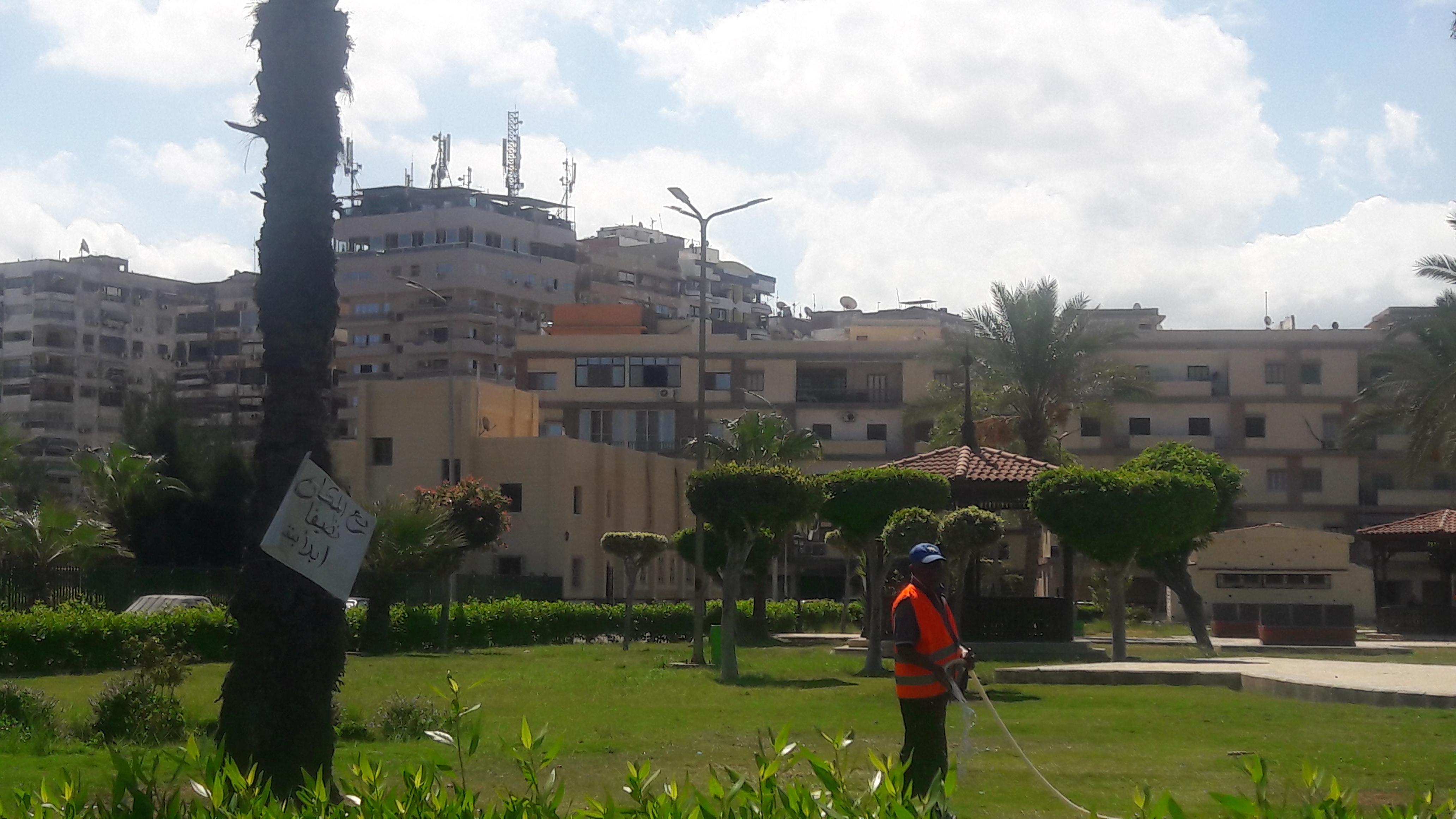 طقس معتدل دافئ على مدينتى بورسعيد وبورفؤاد  (7)