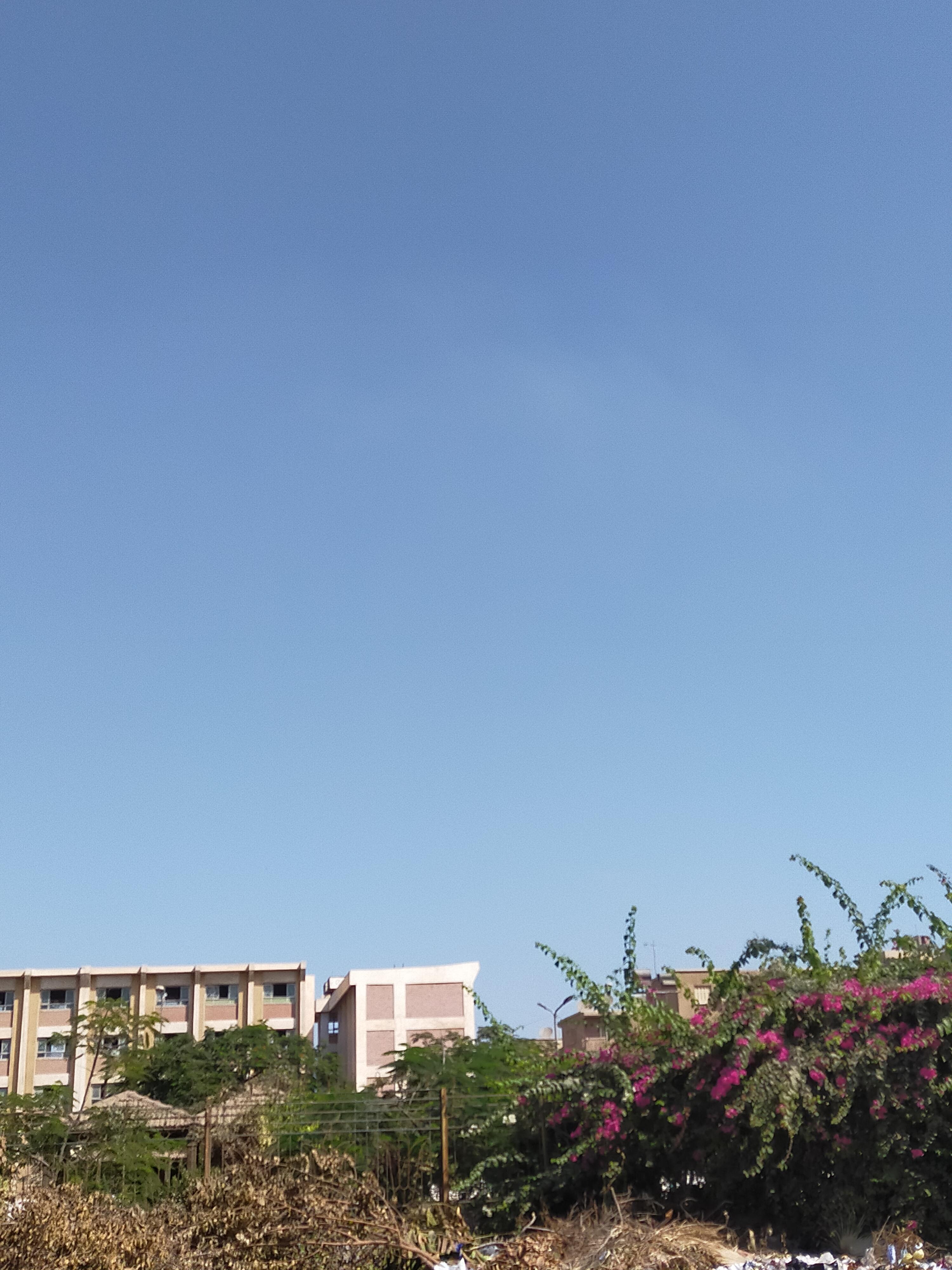شمس ساطعة ورياح خفيفة وسحب متوسطة فى الغربية (3)