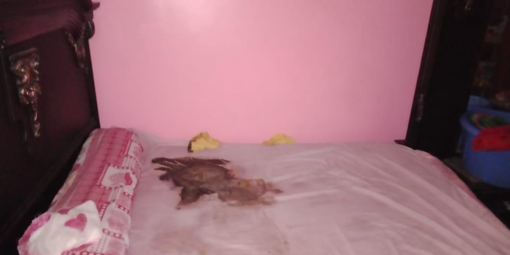 سرير الواقعة للطفل