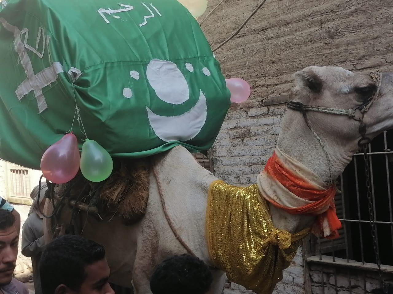 المئات من المسلمين والأقباط يحتفلون بالمولد النبوى (3)