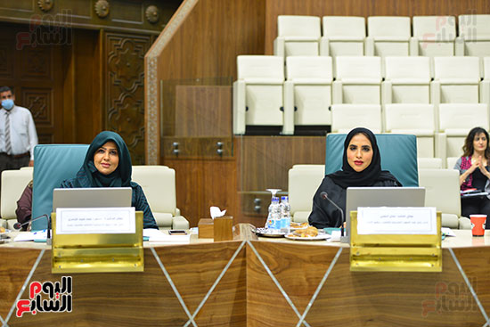 البرلمان العربى (19)