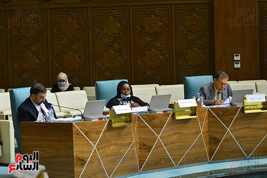 البرلمان العربى (14)