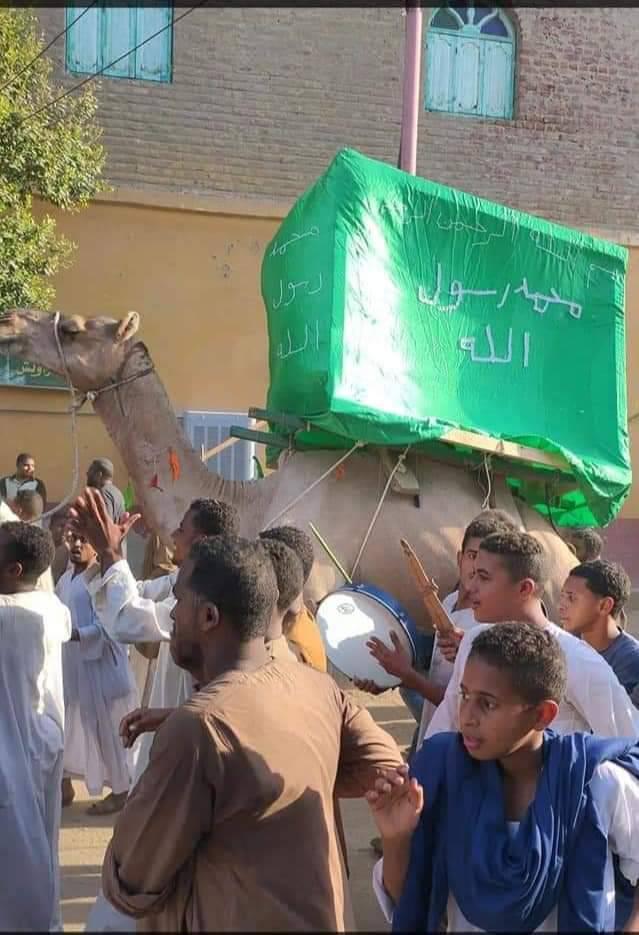 أهالى قرية الحلة بإسنا يحتفلون بالمولد النبوى بزفة وموكب على جمل  (1)