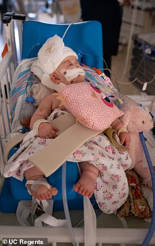35010964-8894259-The_babies_are_recovering_well_in_the_PICU_doctors_say_Pictured_-a-81_1603998986992