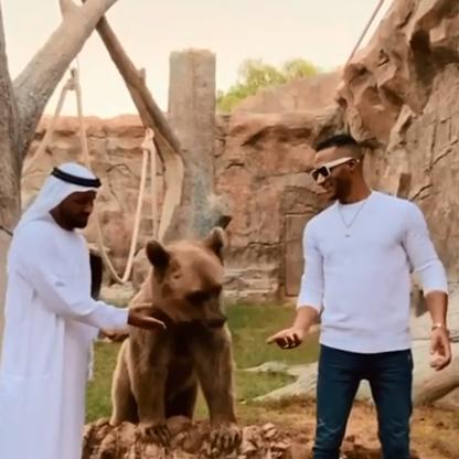 محمد رمضان مع الدب
