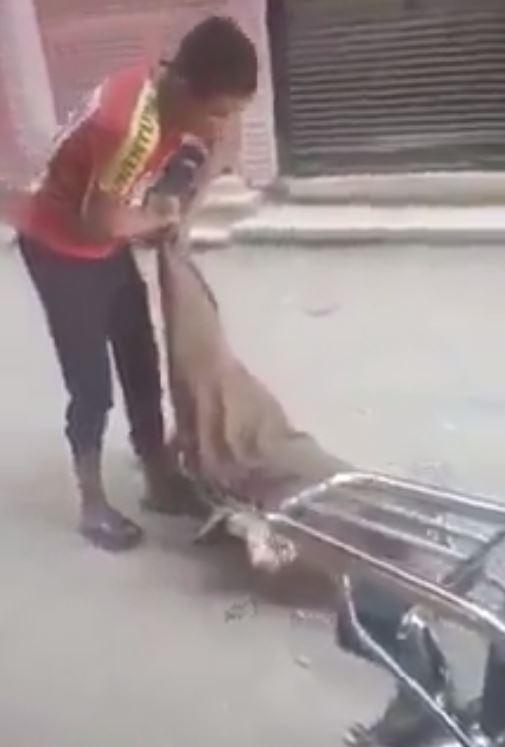 شاب يعتدي على مسن