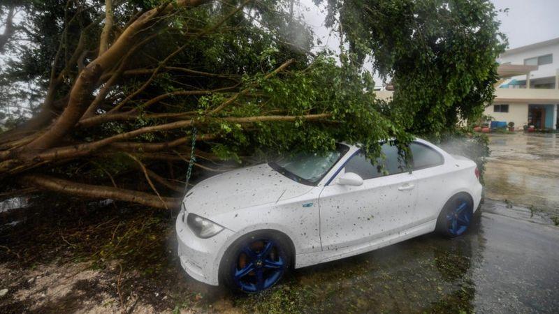 اعصار المكسيك