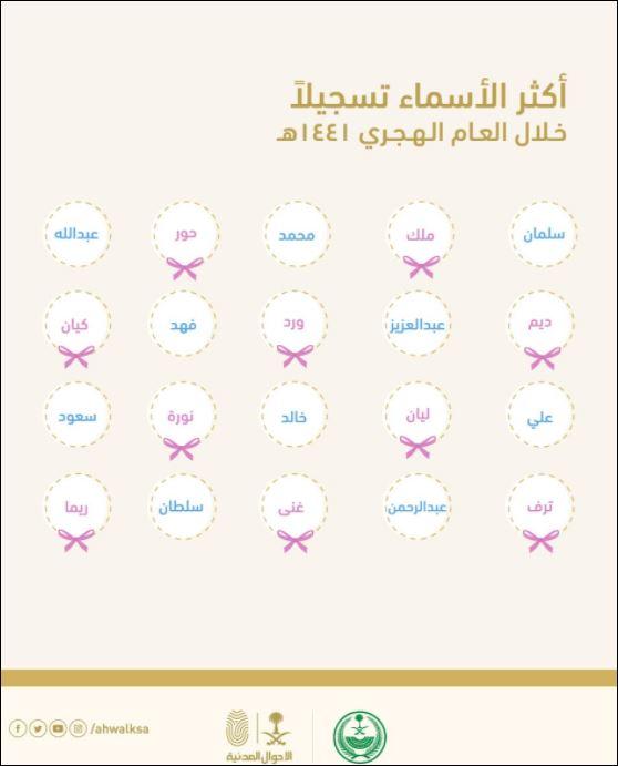 انتاج رافليسيا أرنولدي البصيرة اسماء رجال سعودية Comertinsaat Com