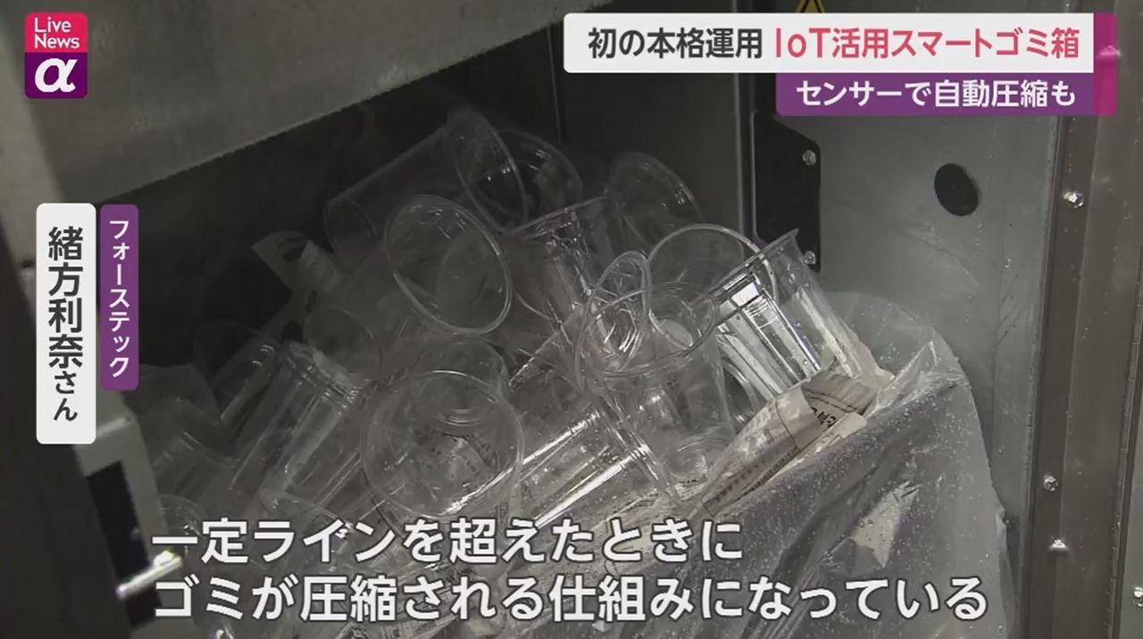 محتويات صناديق القمامة