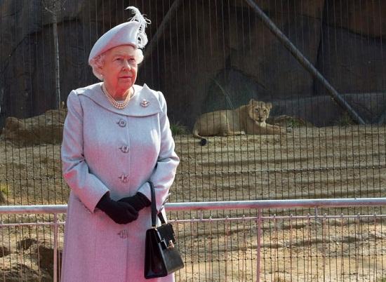 أثناء زيارتها لحديقة الحيوان