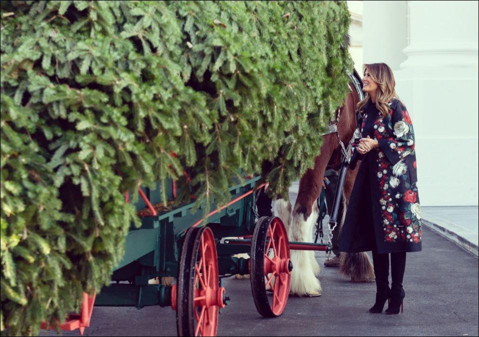 ميلانيا ترامب تستقبل أخر شجرة كريسماس في عهد الرئيس الأمريكى (4)