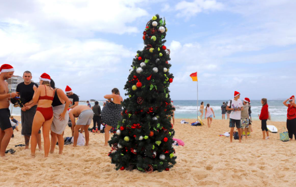 شجرة عيد الميلاد على شواطئ استراليا
