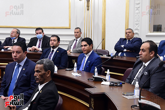 الجلسة العامة لمجلس الشيوخ (11)