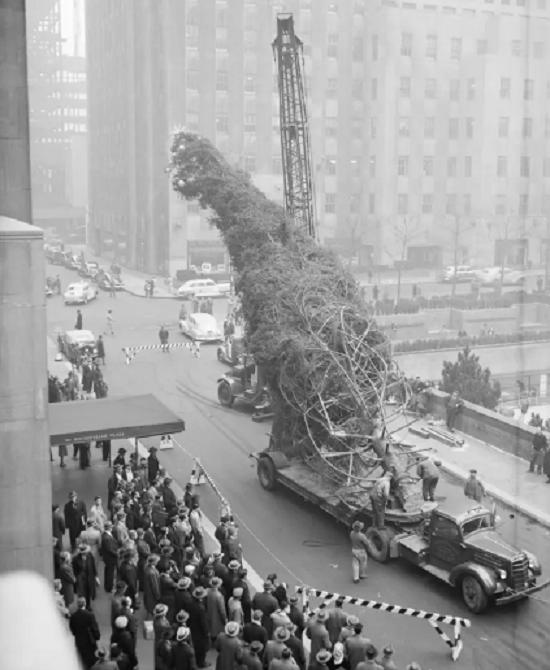 شجرة الكريسماس عام 1946 بعد الحرب العالمية الثانية