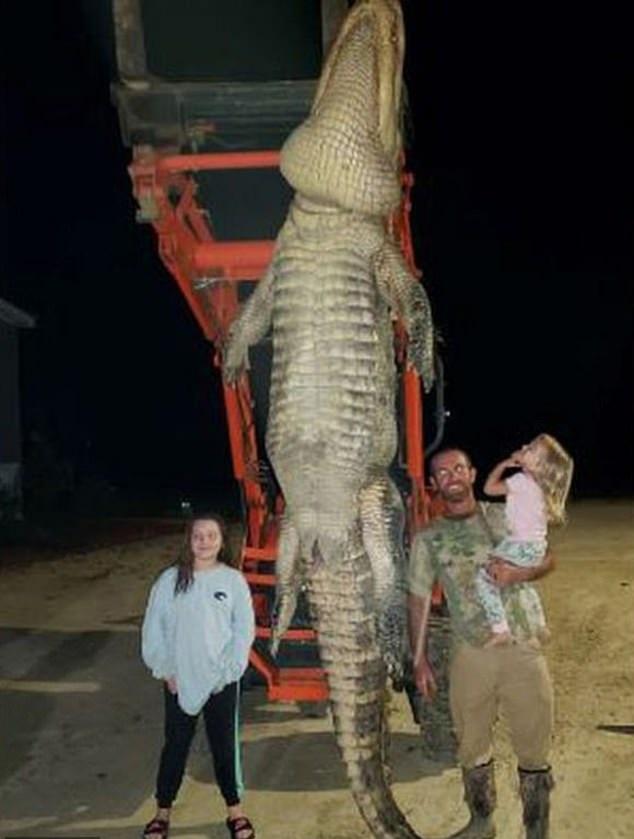 رجلا يصطاد تمساحا ضخما بطول 4 متر بأمريكا (1)