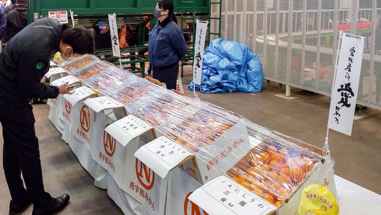 201105150649-03-mandarin-oranges-auction-japan
