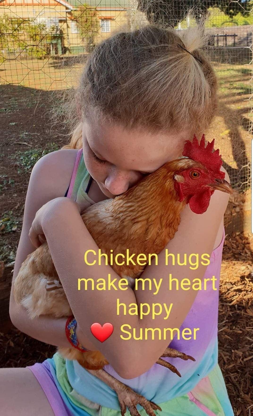 سمر تحتضن دجاجة