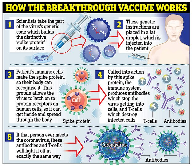 اللقاح من فايزر