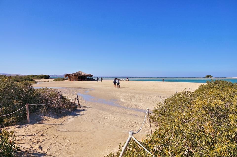 جمال الطبيعة على الشواطئ