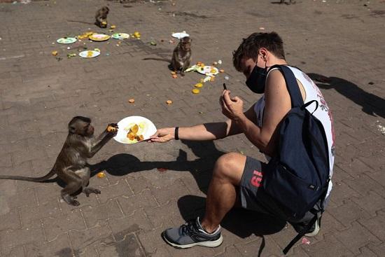 سائح يقدم طبق طعام لقرد أمام معبد برانج سام يود