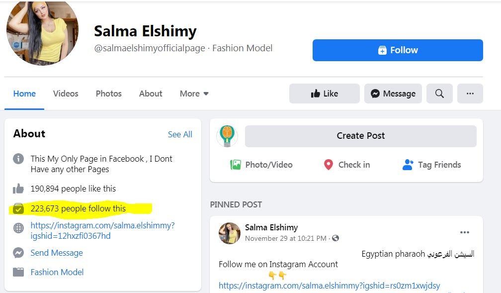 فيس بوك سلمي الشيمي