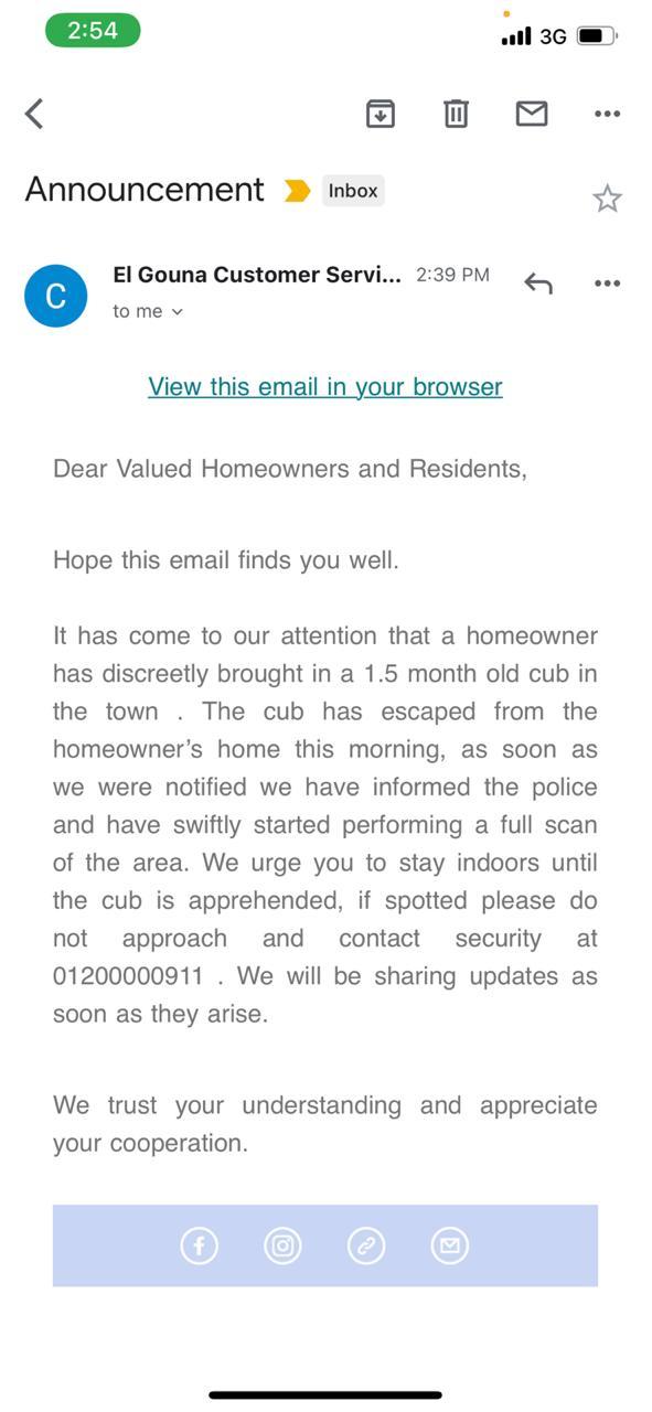 بريد إلكتروني عن هروب الشبل في الجونة