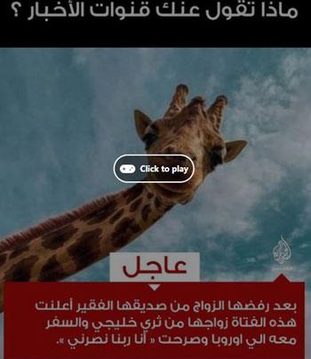 تطبيق الجزيرة  (1)