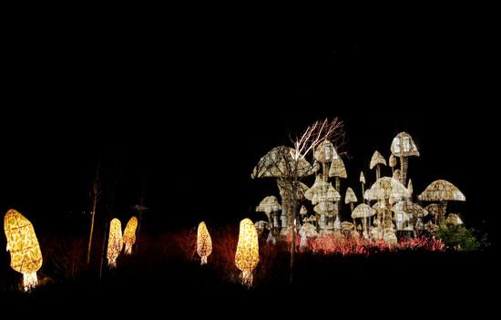 تحضيرات الكريسماس.. أضواء أعياد الميلاد تضيئ ليل بريطانيا (10)