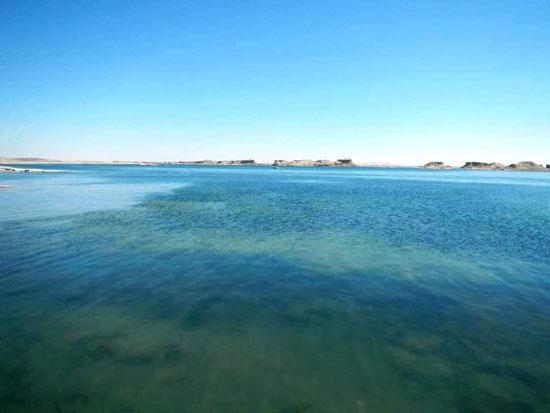 البحيرات الغامضة جمال خلاب فى صحراء الوادى الجديد (4)