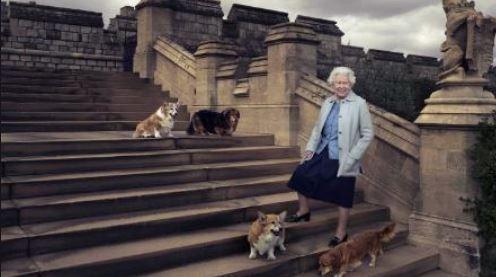 الملكة البريطانية إليزابيث الثانية مع كلابها