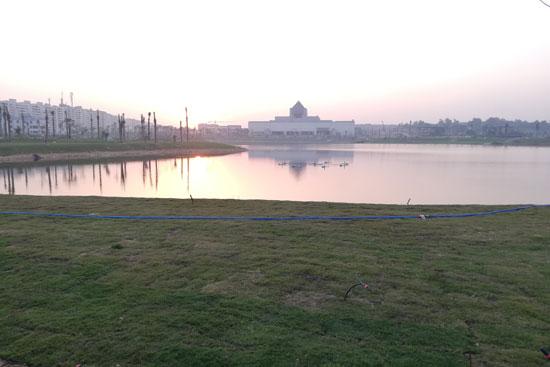 بحيرة عين الصيرة بالقاهرة تتحول لجنة خضراء (11)