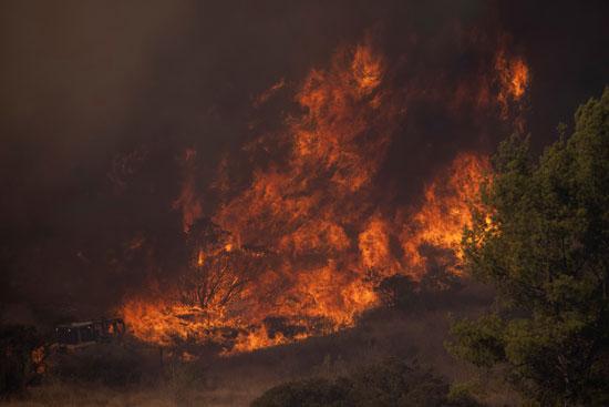 تجدد الحرائق فى غابات كاليفورنيا والنيران تلتهم مساحات واسعة (5)