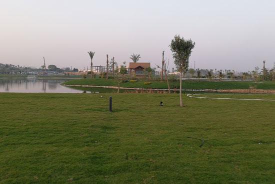 بحيرة عين الصيرة بالقاهرة تتحول لجنة خضراء (4)