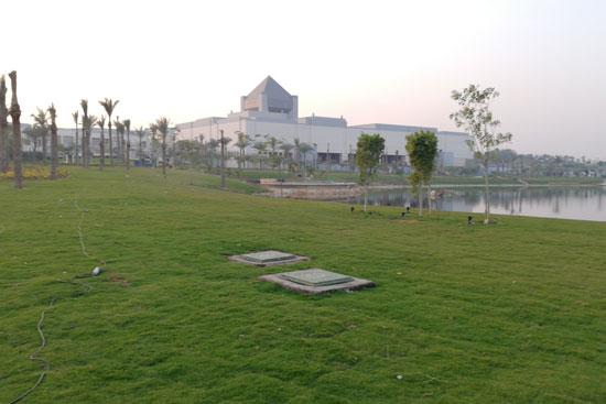 بحيرة عين الصيرة بالقاهرة تتحول لجنة خضراء (5)