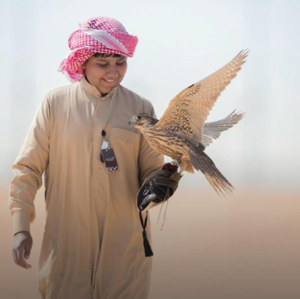 طفل سعودي مشارك في مهرجان الصقور