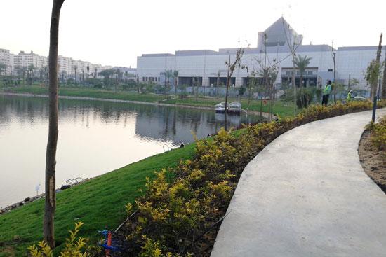 بحيرة عين الصيرة بالقاهرة تتحول لجنة خضراء (2)