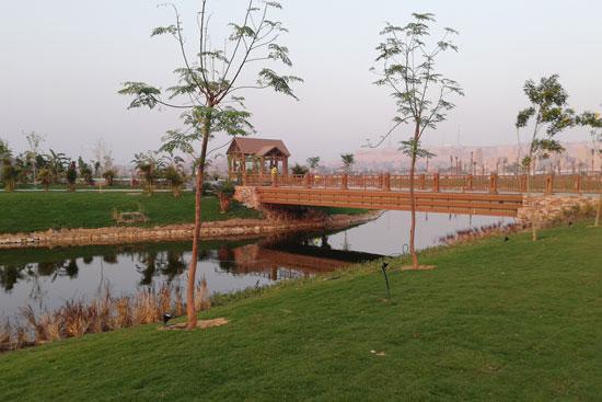 بحيرة عين الصيرة بالقاهرة تتحول لجنة خضراء (6)
