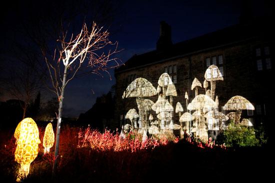 تحضيرات الكريسماس.. أضواء أعياد الميلاد تضيئ ليل بريطانيا (5)