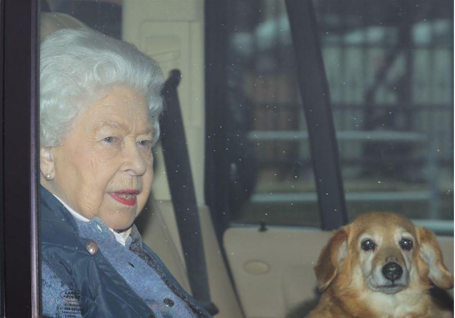 الملكة البريطانية إليزابيث بصحبة كلبها فولكان