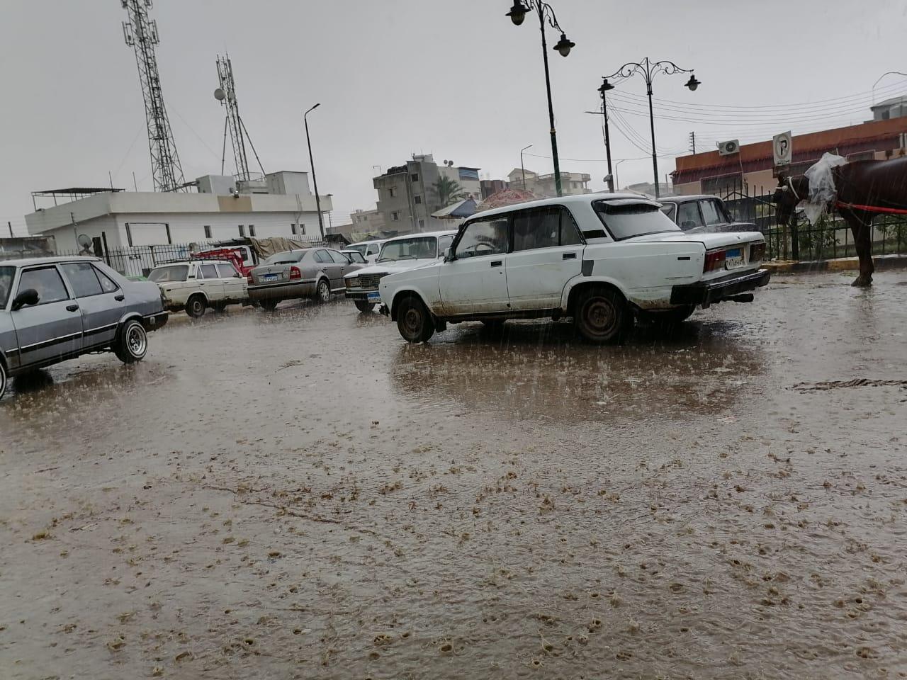 سقوط أمطار على سواحل البحيرة  (3)