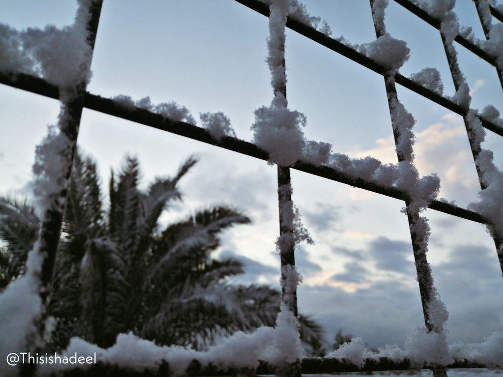 جانب من الثلوج