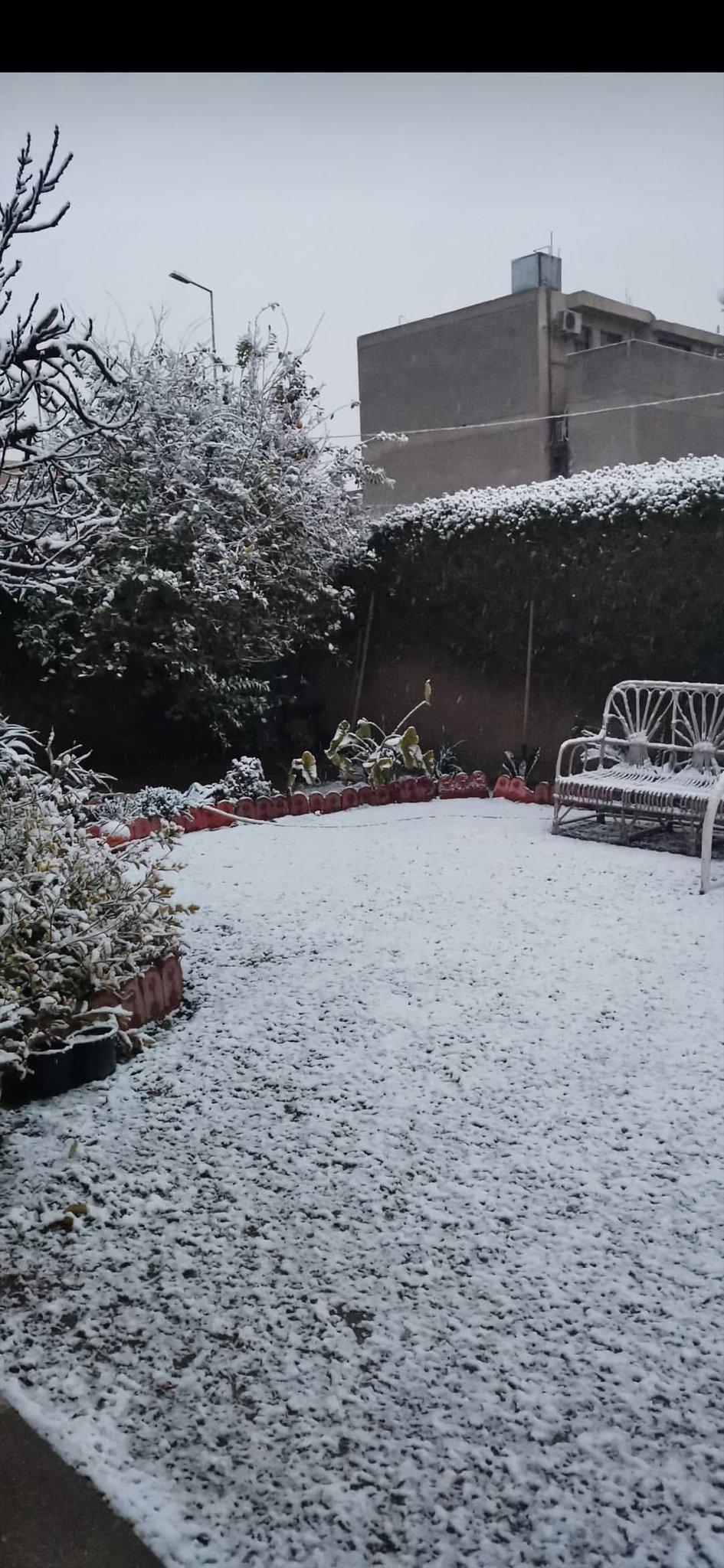جانب من تساقط الثلوج