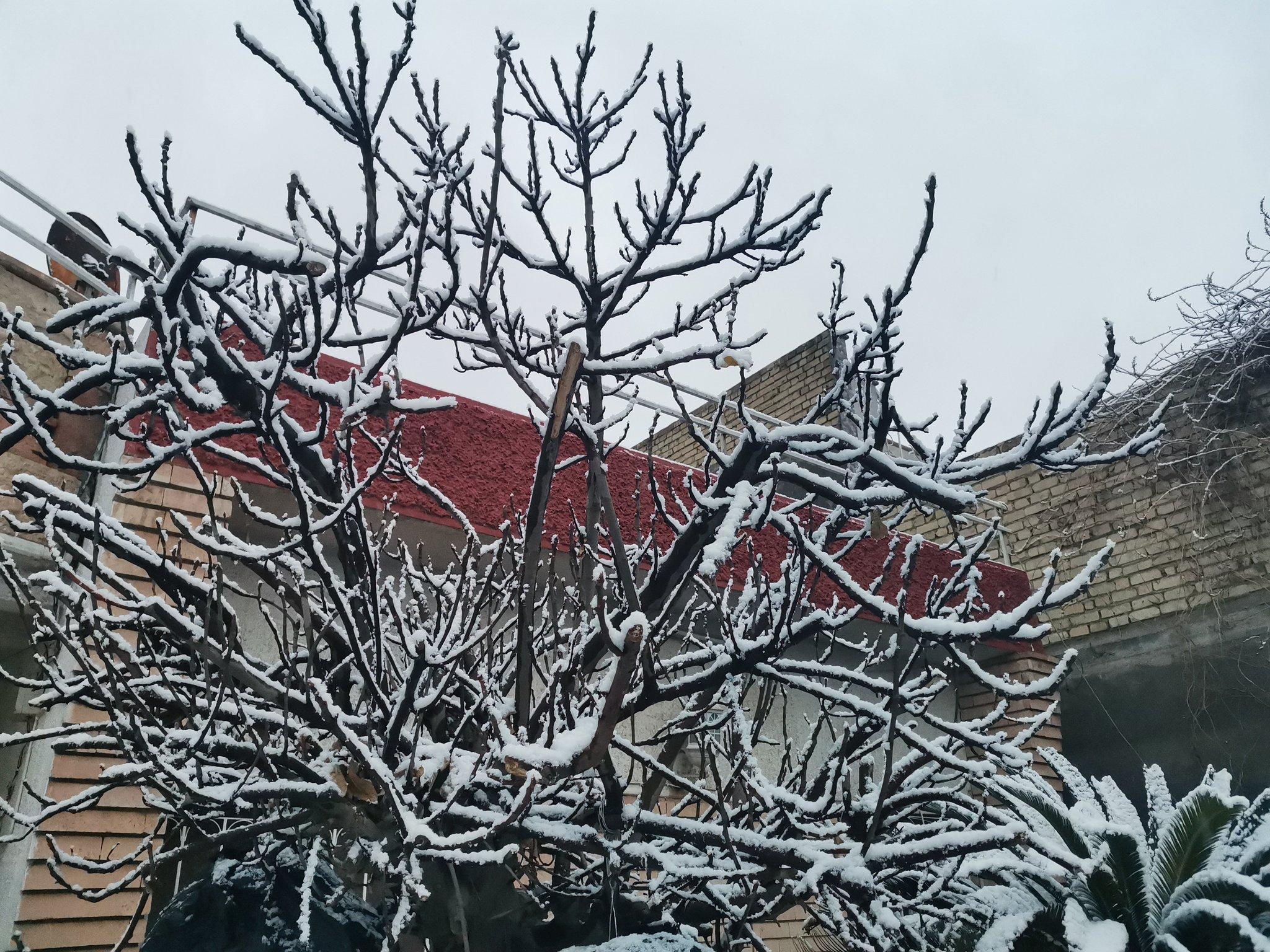 أثار الثلوج