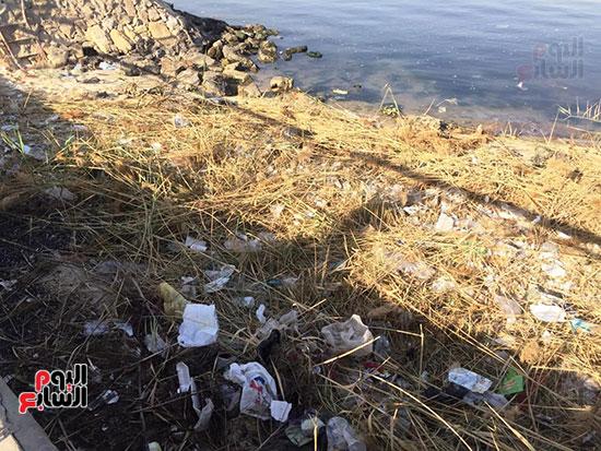 شباب بتحب مصر ينظفون شاطئ بحيرة التمساح بالإسماعيلية (9)