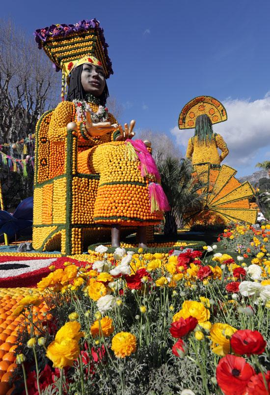 الورود تزين المهرجان